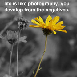Life is like Photog